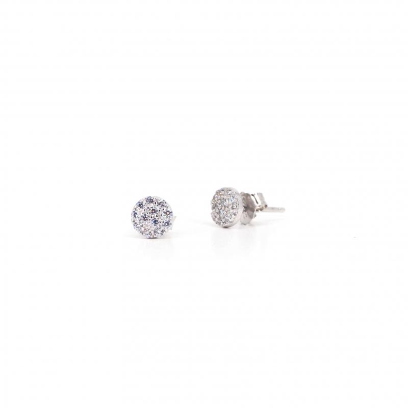Shiny white silver earrings...