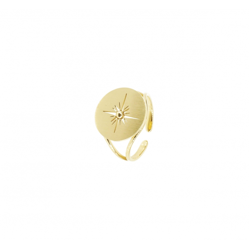 Polar ring in gold steel -...